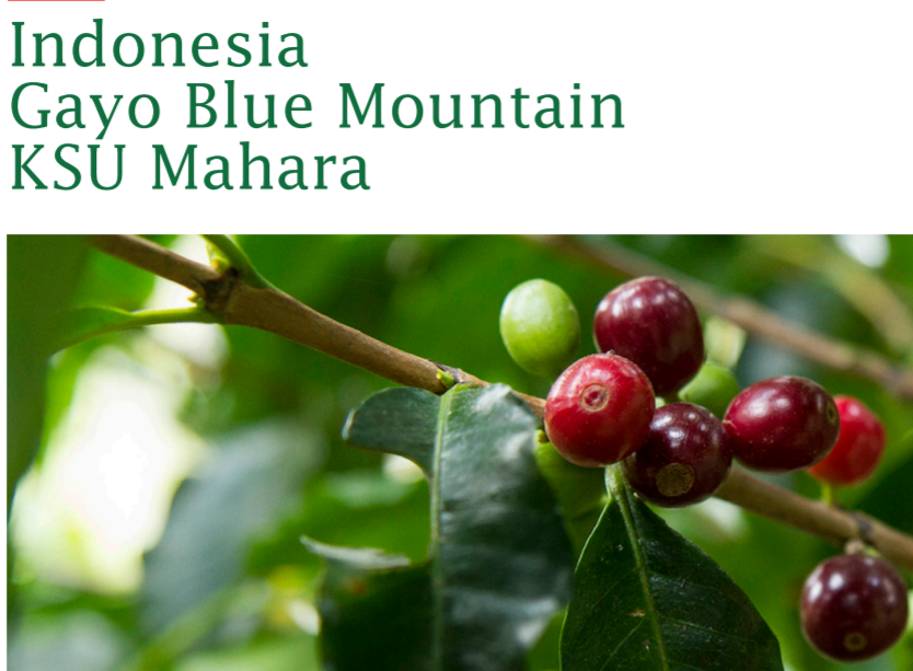 Indonesia Gayo Blue Mountain Pörkölt kávé 125g-KS